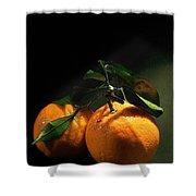 Sweet Orange Shower Curtain