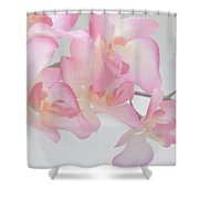 Sweet Orchid Shower Curtain