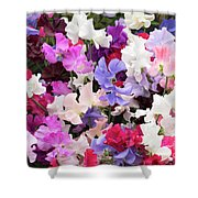 Sweet Pea Spencer Flowers Shower Curtain
