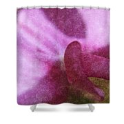 Sweet Pea Shower Curtain