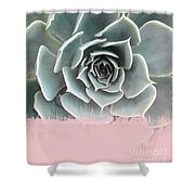 Sweet Pink Paint On Succulent Shower Curtain