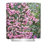 Sweet Pink Southern Azaleas Shower Curtain