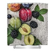 Sweet Plums  Shower Curtain