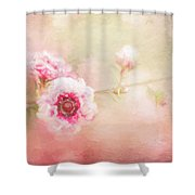 Sweet Spring Blossom Shower Curtain