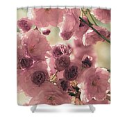 Sweet Spring Blossoms Shower Curtain