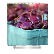 Sweet Summer Cherries Shower Curtain