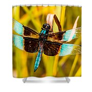 Sweet Surrender Shower Curtain