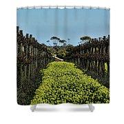 Sweet Vines Shower Curtain by Douglas Barnard