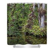 Sweet Water Strand - 12 Shower Curtain