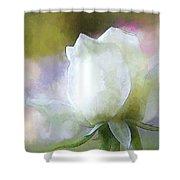 Sweet White Rose Shower Curtain