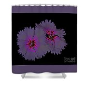 Sweet William On Fire Shower Curtain