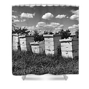Sweetened Nature  Shower Curtain
