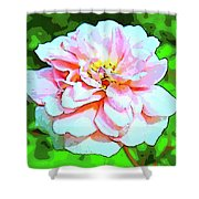 Sweetheart Rose On A Sunny Day Shower Curtain