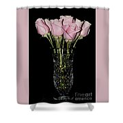 Sweetheart Roses Shower Curtain