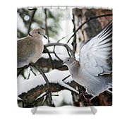 Sweetness In The Trees Shower Curtain