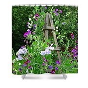 Sweetpea Shower Curtain