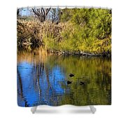 Sweetwater 8 Shower Curtain