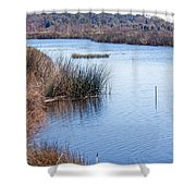 Sweetwater Wetland Pond Shower Curtain