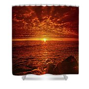 Swiftly Flow The Days Shower Curtain