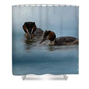 Swimmers Shower Curtain