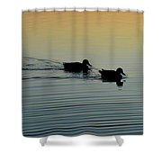 Swimming Into Ripples  Shower Curtain