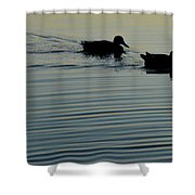 Swimming Into Ripples Two  Shower Curtain