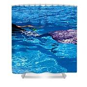 Swimming Mermaid Shower Curtain