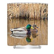 Swimming Partners Shower Curtain