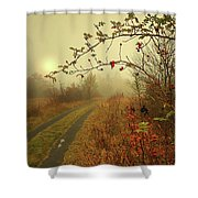 Swing For The Sun. Shower Curtain