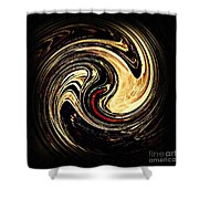 Swirl Design 2 Shower Curtain