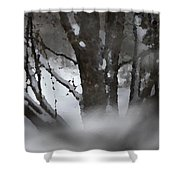 Swirling Into Winter Shower Curtain