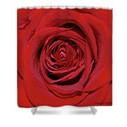 Swirling Red Silk Shower Curtain