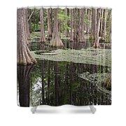 Swirls In The Swamp Shower Curtain