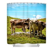Happy Swiss Cows Shower Curtain