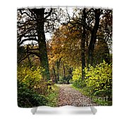 Swithland Woods, Leicestershire Shower Curtain