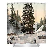 Switzerland: Davos, C1895 Shower Curtain