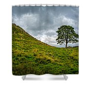 Sycamore Gap Shower Curtain