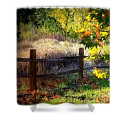 Sycamore Grove Fence 1 Shower Curtain