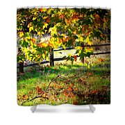 Sycamore Grove Fence 2 Shower Curtain