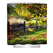Sycamore Grove Series 11 Shower Curtain