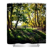 Sycamore Grove Series 12 Shower Curtain