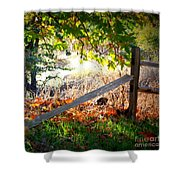 Sycamore Grove Series 8 Shower Curtain