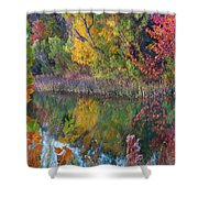 Sycamores And Willows Shower Curtain