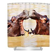 Sycnonicity Shower Curtain