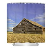 Symbol Of Days Gone By Shower Curtain