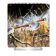 Symbol Of Spring Shower Curtain
