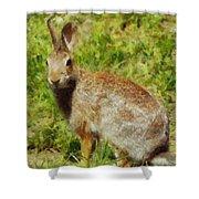 Symbol Of The Rabbit Shower Curtain