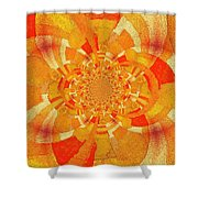 Symmetrical Abstract In Orange Shower Curtain