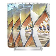 Symmetry In Perspective Shower Curtain