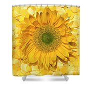Symphony In Yellow Shower Curtain